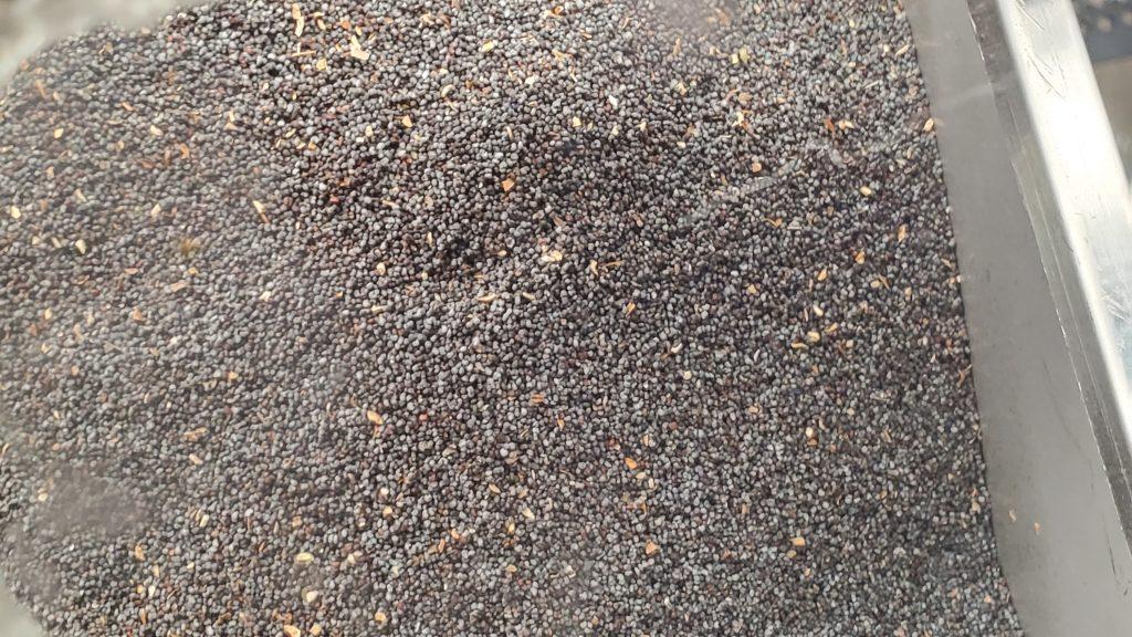 unwashed uk poppy seed straw